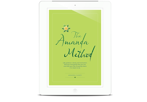 The Amanda Method Online Workbook
